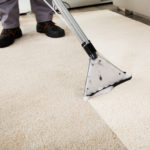 How To Maintain Your Carpets